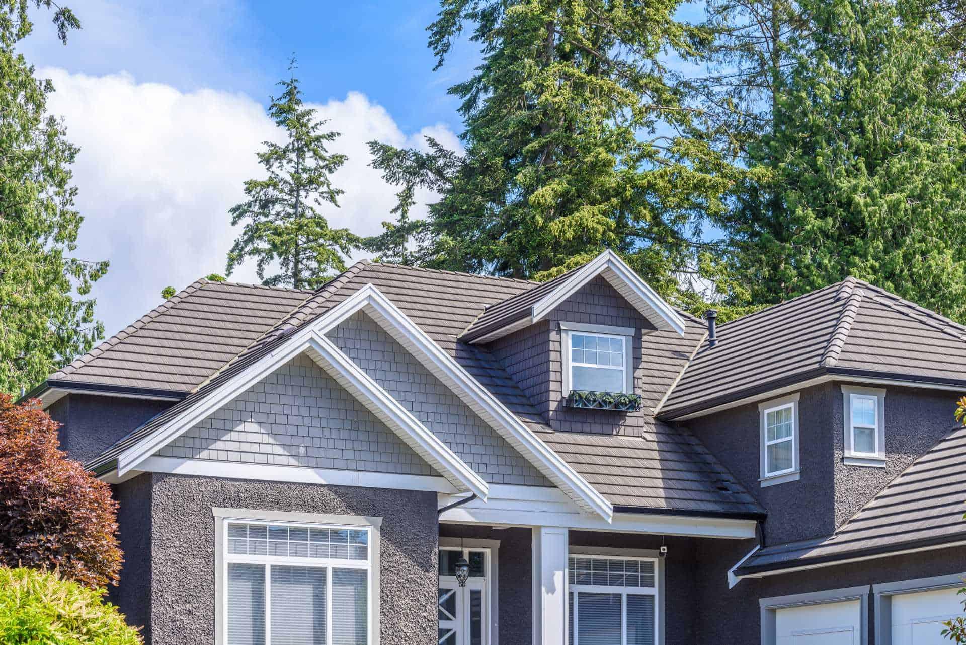 home with gray siding and asphalt shingle roof