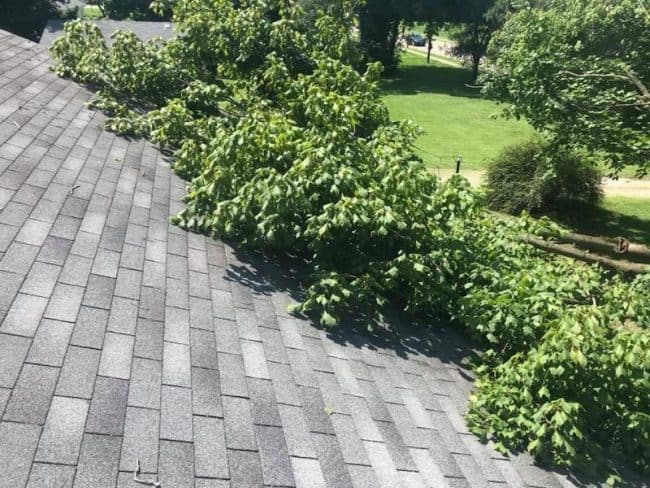 roofers delaware ohio roof with fallen tree on it
