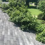 storm damage mansfield ohio roof with fallen tree on it