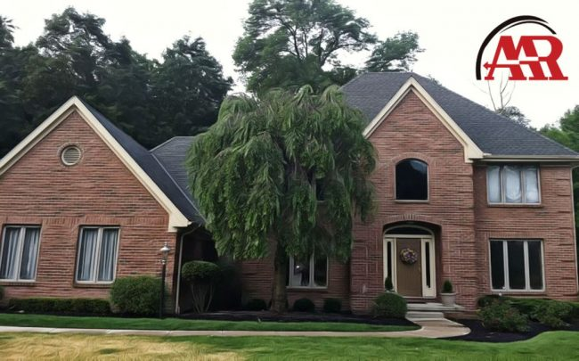 roofers ohio update home with shingle roof and tree in front